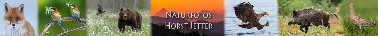 Jetter-Naturfotos